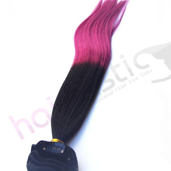 Dip Dye hår 1 / Lila